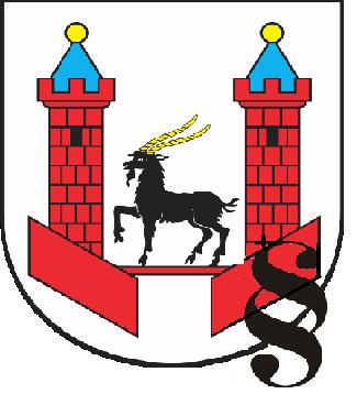 Uchwała Rady Miejskiej w Praszce